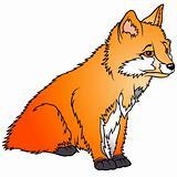 Sitting Fox Cub
