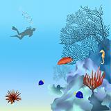 Coral reef - 2