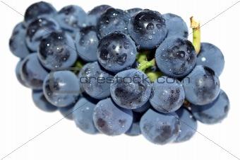 Close-up grape