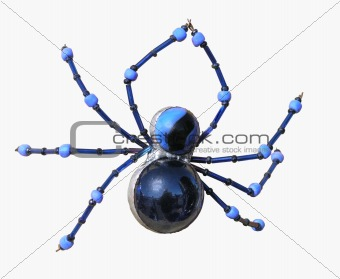 Beaded Money Spider