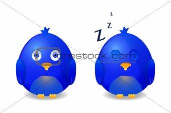 blue bird awake and sleeping