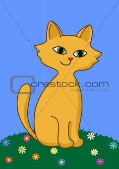 Kitten on meadow