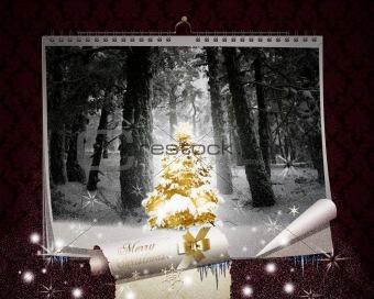 Fairy Christmas Night
