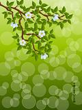 Floral background with a tree branch. Vector illustration.