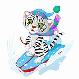 Fast fun Tiger