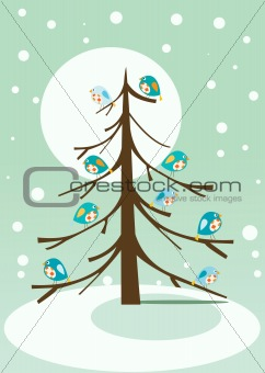 birds on winter tree