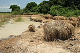 Brick Factory - Uganda, Africa