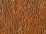 Brown photofibre surface.