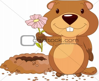 Groundhog holding a first flower
