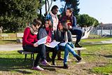 College Students Studying Togheter at Park