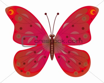 A beautiful green butterfly isolated.  EPS10 Vector