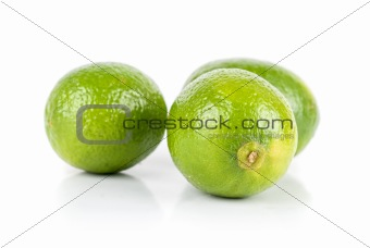 green brazilian limes