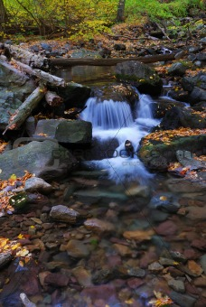 Autumn creek with rocks
