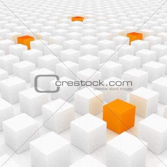 Orange cubes between whites