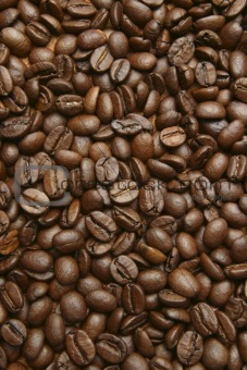 toasted coffe beans