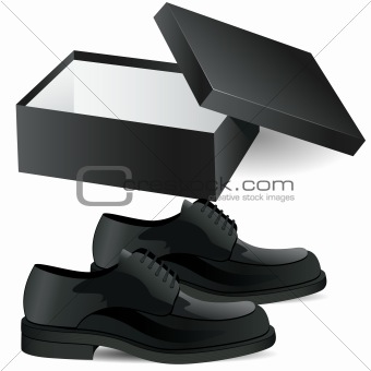 black shoe box and man's black business shoes