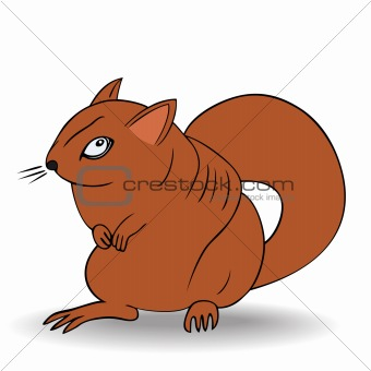 angry squirrel - vector