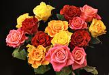 Bunch of roses on black background