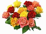 Bunch of roses isolated on white background