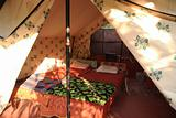 Inside a jungle tent in Goa