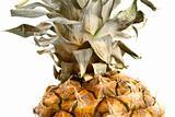 closeup of pineapple
