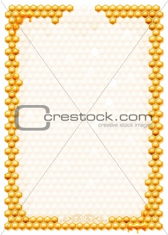 Frame with bee honeycombs