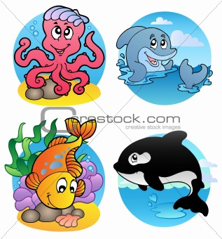 Various aquatic animals and fishes