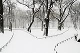 Alexandriyski park at snowfall in Saint Petersburg, Russia.