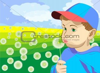 a little boy blowing on a dandelion in the meadow