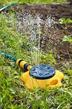 Yellow sprinkler irrigating garden