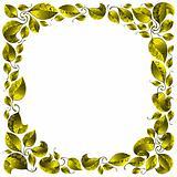 Leaves frame.