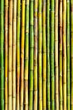 good quality natural bamboo texture