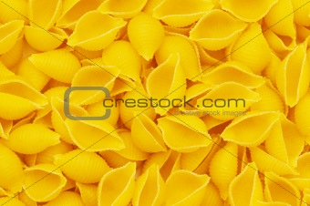 Close up of italian pasta - spiral shaped