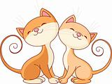 Two cute  cats in love