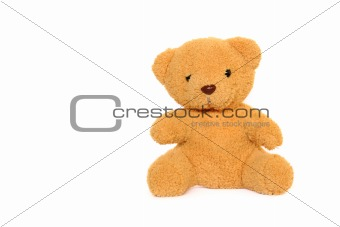 Classic teddybear isolated on white background