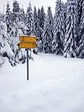 Road sign covered with snow