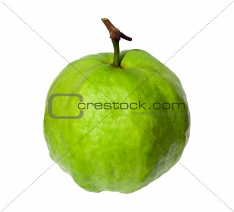Single guava on white background.