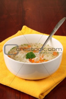 Turkey or chicken soup
