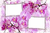 romantic background with orchids and bamboo frames