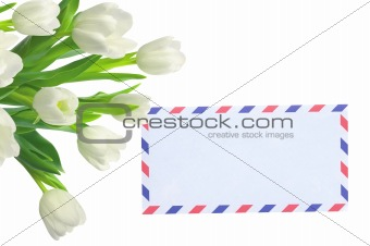 Bouquet of tulips and post card on white
