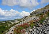 Karst-landscape region Burren