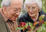 Senior couple looking to a rose