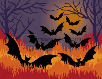 Bats Out of Hell