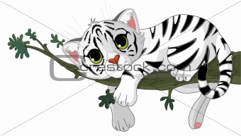 Tiger is on a branch