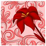 vector red lily