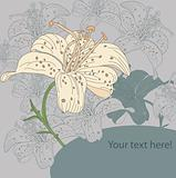 vector background with lilies