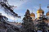 Golden domes of Orthodox churches, Russian Federation, Moscow Kremlin