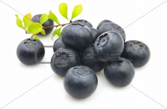 Sweet blueberry