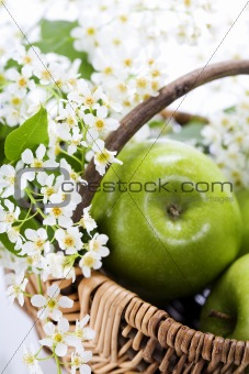 Green apple with flowers