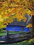 Autumn in Pirogovo